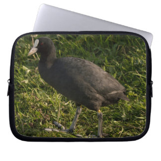 Coot Laptop Computer Sleeves