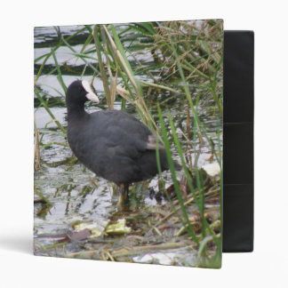 Coot on the Riverbank Photograph Album Binder