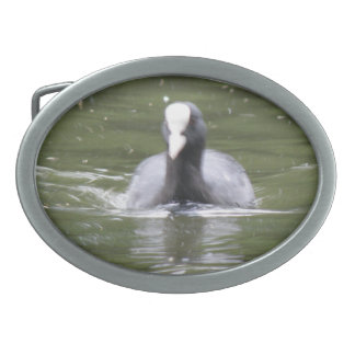 Coot Swimming Belt Buckle