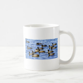 Coots, American Coots Coffee Mugs