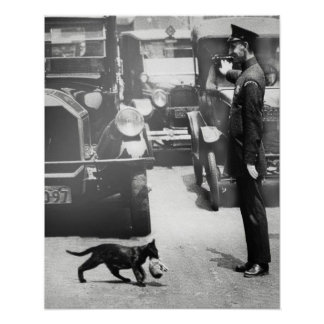 Cop Stop Traffic for Mama Cat Poster