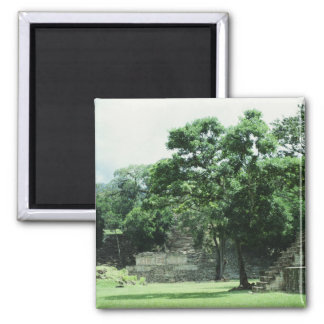Copan Honduras Mayan Ruins Photo Designed Magnet
