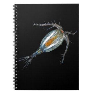 Copepod Spiral Notebooks