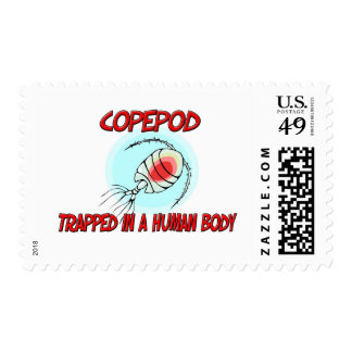 Copepod trapped in a human body stamp