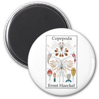 Copepoda de Ernst Haeckel Imán Redondo 5 Cm