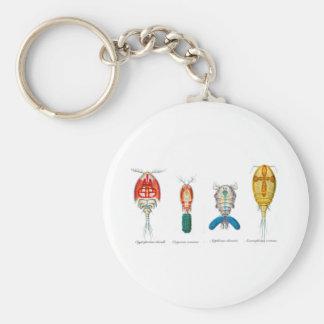 Copepods Basic Round Button Keychain