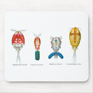 Copepods Mouse Pad