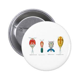 Copepods Pin Redondo De 2 Pulgadas