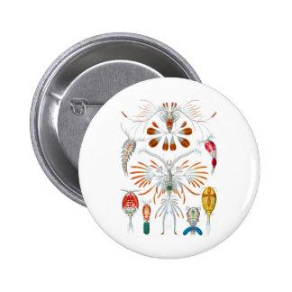 Copepods Pinback Button