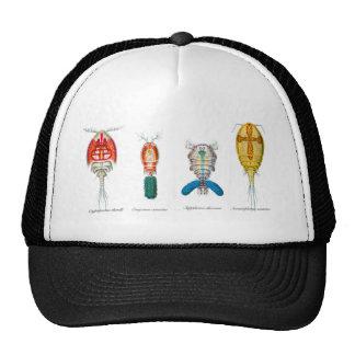 Copepods Trucker Hat