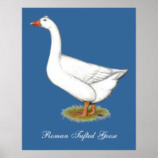 Copetudo romano del ganso póster