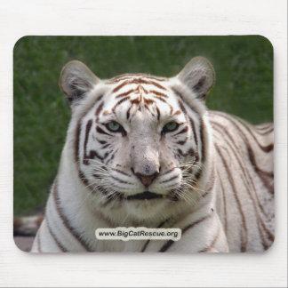 Copia blanca de Tiger-DSC_3949e Alfombrillas De Ratón