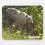 Copia blanca del tigre 009 tapete de raton