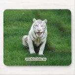 Copia blanca del tigre 018 tapetes de raton