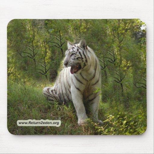 Copia blanca del tigre 020 tapetes de ratón