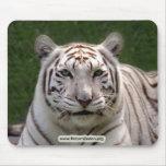 Copia blanca del tigre 3949e alfombrillas de ratones