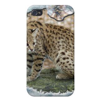 Copia de Geoffroy Cat-c-16 iPhone 4 Carcasas