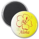 Copia del botón de la hawaiana imanes