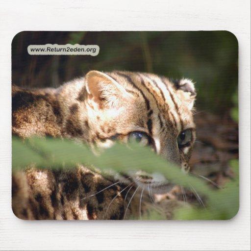 Copia del gato 008 de Bengala Alfombrilla De Ratón