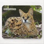 copia del serval 015 alfombrilla de raton
