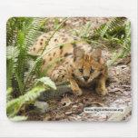 copia del serval 019 alfombrillas de ratones
