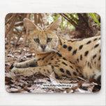 copia del serval 025 alfombrillas de raton