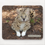 copia del serval 028 alfombrillas de ratones