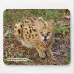 copia del serval 044 tapetes de raton