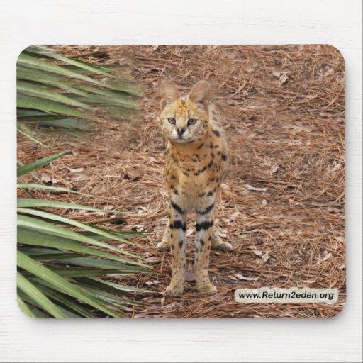 copia del serval 046 alfombrillas de ratón