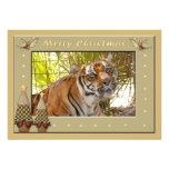Copia del tigre Bengali-c-158 Comunicado