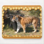 Copia del tigre Flavio-c-1 Tapetes De Ratón