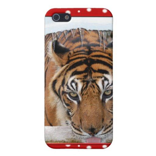 Copia del tigre Nini-c-140 iPhone 5 Cobertura