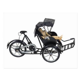 Copia EnergyEfficientRickshaw112709 Postal