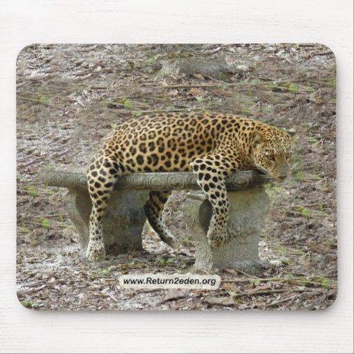 Copia LeopardSundari_010 Tapete De Ratón