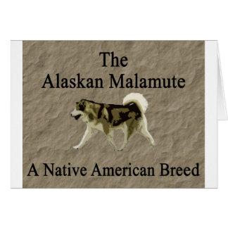 Copia nativa de la raza del malamute tarjeta de felicitación