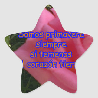 copia rosita2 pegatina en forma de estrella