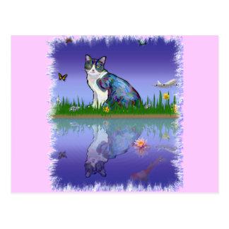 Copie el gato postales