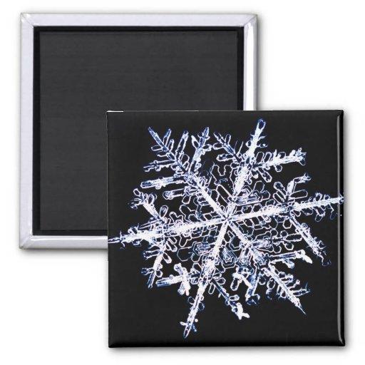 Copo de nieve 9 imán