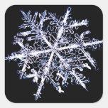 Copo de nieve 9 calcomania cuadradas personalizadas