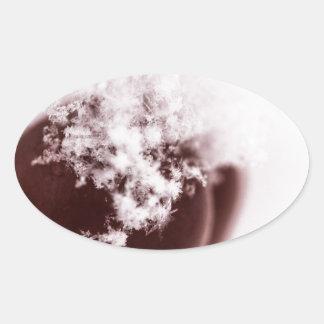 Copo de nieve en el cangrejo Apple Pegatina Ovalada