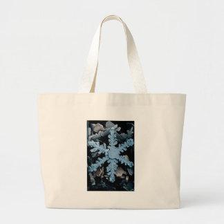 Copo de nieve hexagonal magnificado de la dendrita bolsa