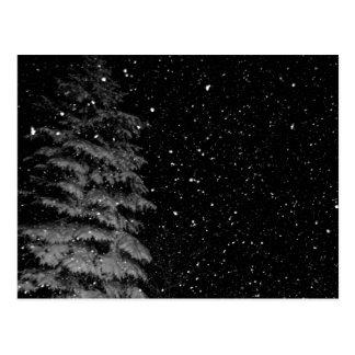 copos de nieve en la fotografía única de la noche tarjeta postal