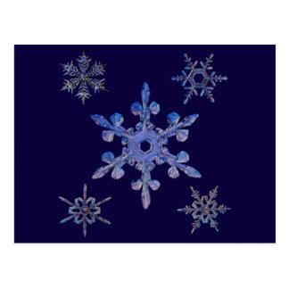 Copos de nieve, mirada bordada tarjeta postal