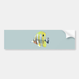 Copper-banded Butterfly Fish Car Bumper Sticker
