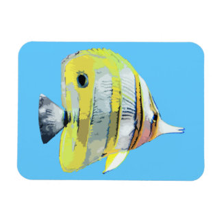 Copper-banded Butterfly Fish Rectangular Photo Magnet