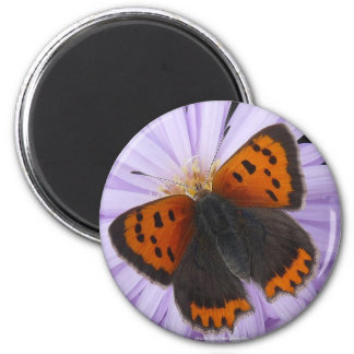 Copper Butterfly Decorative Refrigerator Magnets
