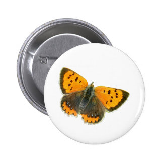 Copper butterfly design buttons and badges