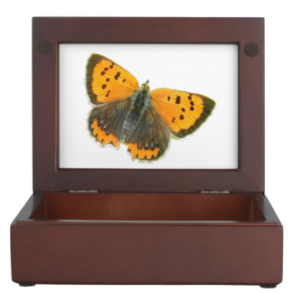 Copper butterfly design jewelry box