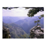 Copper Canyon Post Card
