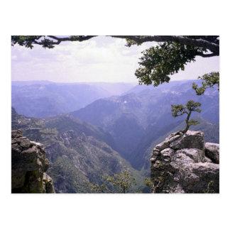 Copper Canyon Postcard